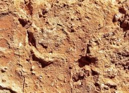 Coarse-Brick-03-DSCF6721